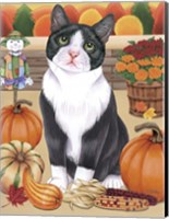 Harvest Cat Fine Art Print