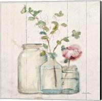 Blossoms on Birch IV Fine Art Print