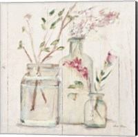 Blossoms on Birch VI Fine Art Print