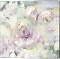 Shabby Peony II Fine Art Print