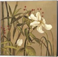 Bamboo Beuaty I Fine Art Print
