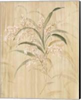 Bamboo Blossoms Fine Art Print