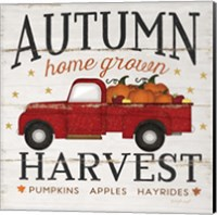 Autumn Harvest Fine Art Print