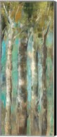 April Birch Forest Panel II Fine Art Print