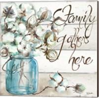 Cotton Boll Mason Jar I Family Fine Art Print