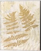 Golden Fern II Fine Art Print