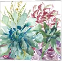 Succulent Garden Watercolor II Fine Art Print