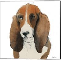 Oberon Watercolor Fine Art Print