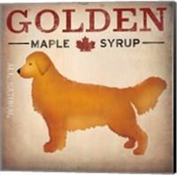 Golden Dog at Show No VT Fine Art Print