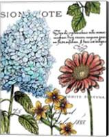 Botanical Postcard Color I Fine Art Print
