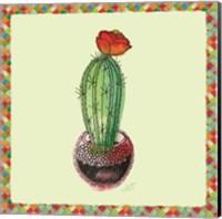 Rainbow Cactus I Fine Art Print