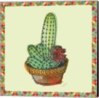 Rainbow Cactus III Fine Art Print