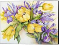 Yellow Tulips with Blue Iris Fine Art Print