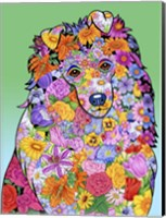 Flowers Shetland Sheepdog Fine Art Print