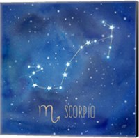 Star Sign Scorpio Fine Art Print