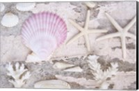 Beach Treasures IV Fine Art Print