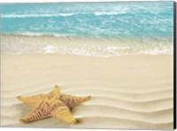 Beach Star Fine Art Print