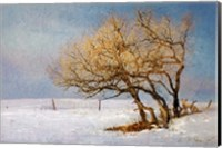 Fox And Winter Oak Fine Art Print