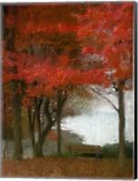 Maple Tree Walk Fine Art Print