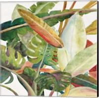 Tropical Lush Garden Square II Fine Art Print