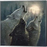 Howling Wolves - In Harmony Fine Art Print