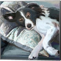 Couch Collie Fine Art Print