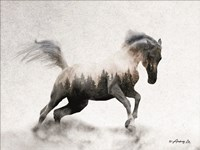 Running White Stallion Fine Art Print