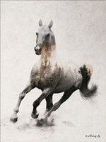 Galloping Stallion Fine Art Print