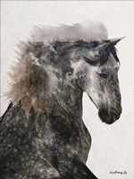Proud Stallion Fine Art Print