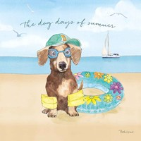 Summer Paws III Fine Art Print
