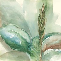 Exotic Flower I Fine Art Print