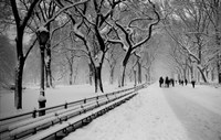 Central Park Snow Fine Art Print