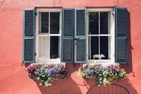 Window Charm Fine Art Print