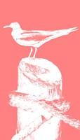 Perching Seabird I Fine Art Print