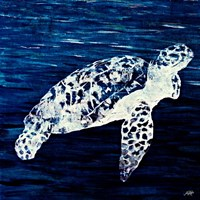 Swim Along II Fine Art Print