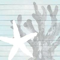 Starfish on Blue Wood Framed Print
