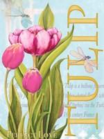 Elegant Tulip II Fine Art Print