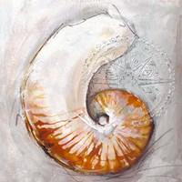 Pearl Shell Medley I Fine Art Print