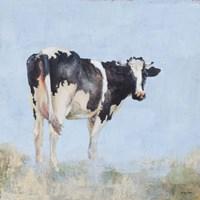 Posing Cow Fine Art Print