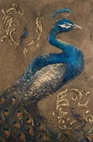 Pershing Peacock I Fine Art Print