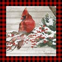 Winter Red Bird III Fine Art Print