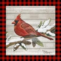 Winter Red Bird IV Fine Art Print