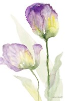 Teal and Lavender Tulips II Fine Art Print