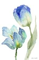 Teal and Lavender Tulips III Fine Art Print