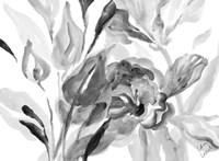 Dark Florals Fine Art Print