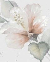Neutral Hibiscus II Fine Art Print