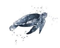 Navy Ink Turtle II Fine Art Print