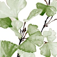 Mint Ginko Stems II Fine Art Print
