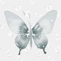 Grey Watercolor Butterflies II Fine Art Print