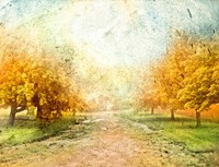 Oak Path Fine Art Print